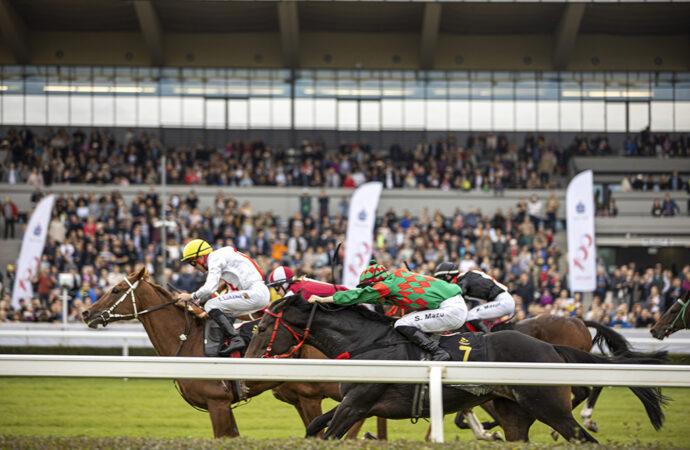 Przyszłość wyścigów konnych. Refleksje po2020r.