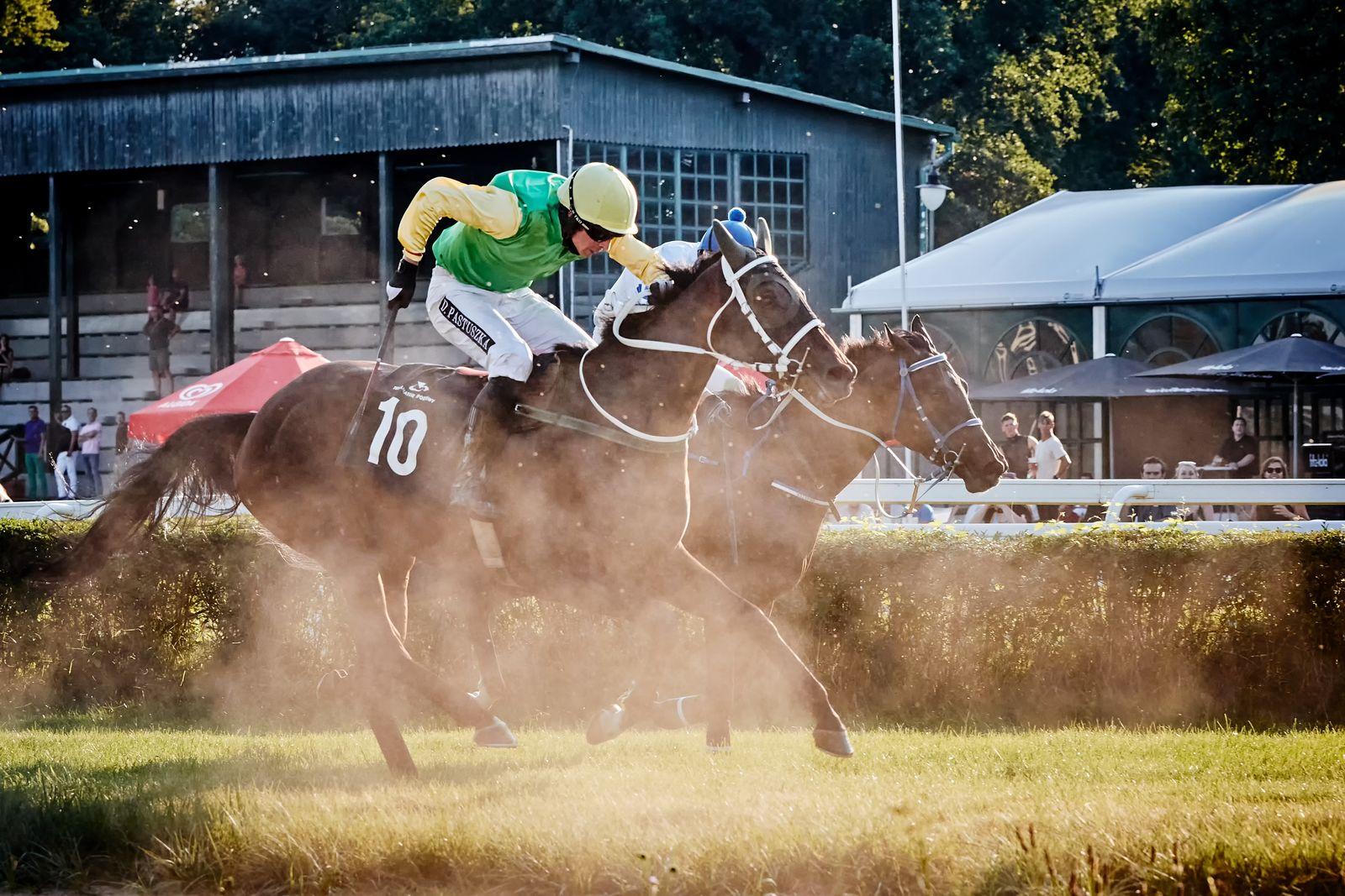 Świat dyskutuje ozakazie używania bata nawyścigach konnych